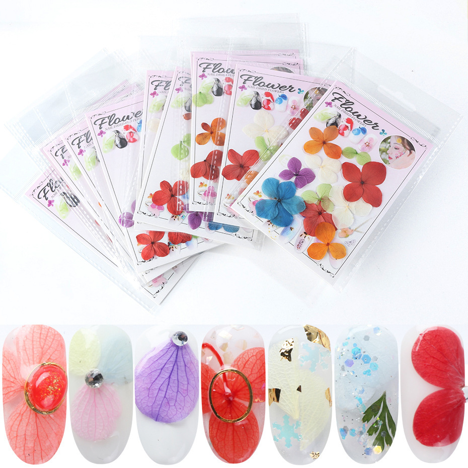 Manicure Dried Flower INS Japanese-style Eternal Life Dried Flower Manicure Flower Stickers Real Multi-color Large Petal Hydrang