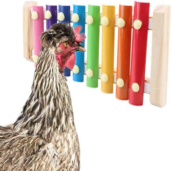 Chicken Xylophone Durable Wonderful Gameplay Hens Parrots Pet Chicken To Relieve Boredom Toy Parrot Percussion Chewing Teeth Toy image