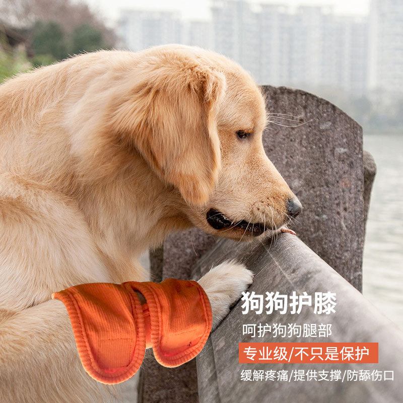 Hot Selling Pet Kneecap Dog Postoperative Arthritis Guetre-m Recovery Bandage Cloth Holder Leg Warmer