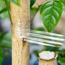 Самоклеящаяся лента для садового фруктового дерева, лента для прививки, прозрачная стретч-пленка