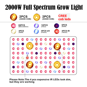 Image 4 - 1000W 2000W Full Spectrum LED COB Plant Grow Light Lamp for Greenhouse Indoor Plants Vegetable Flower,Double Chips