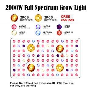 Image 4 - 1000W 2000W ספקטרום מלא LED COB צמח לגדול אור מנורת לחממה מקורה צמחים ירקות פרח, שבבים כפולים