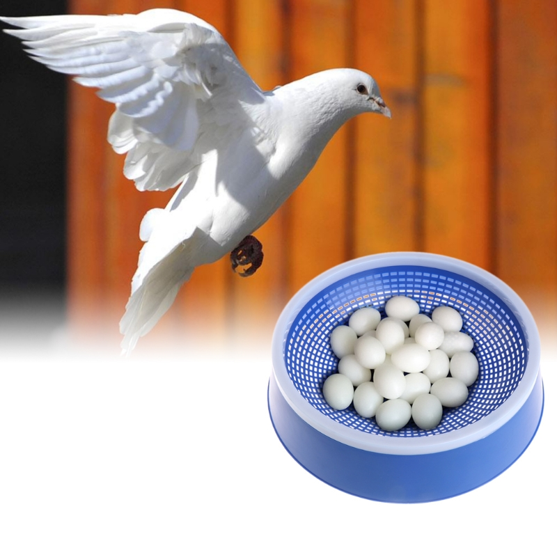 Blue Pigeon Eggs Nest Birds Plastic Dehumidification Basin Supply Breeding Bowl D08F