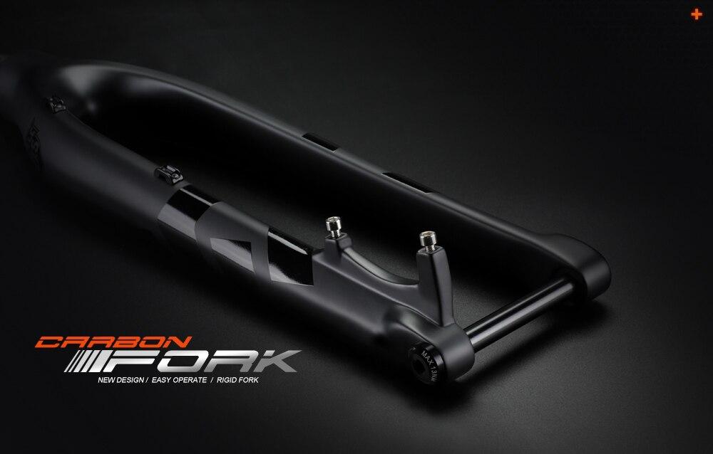MTB Fork_01