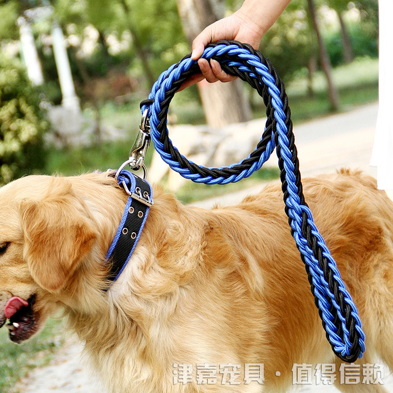 Pet. Pet Zhi Hao Hand-woven Traction Double Color Neck Ring Medium Large Dog Haulage Rope Package Pet