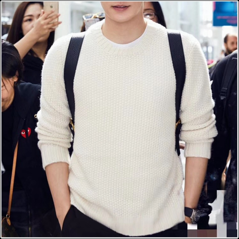Winter Authentic Knitting Cashmere Sweater Men Brand Casual O Neck Woolen Pullovers Jumper Thermal High Quality Hairy Clothes100