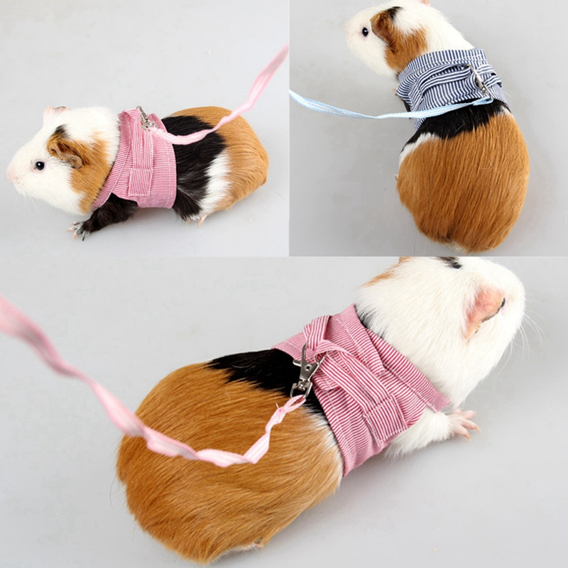 Hamster Rabbit Dog Harness Vest Small Animals Hamster  Pet Puppy Harness Leash Lead Set For Ferret Guinea Pig Kitten