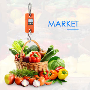 Crane-Scale Electronic-Hook-Scale Kitchen-Weight-Tool Digital Mini Portable New for Fishing-Luggage