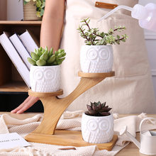 3pcs/set Succulent Plant Flower Pot Holder Ceramic Owl Pattern Desktop Pot With Bamboo Shelf Rack Pot Planter Set Home Decor