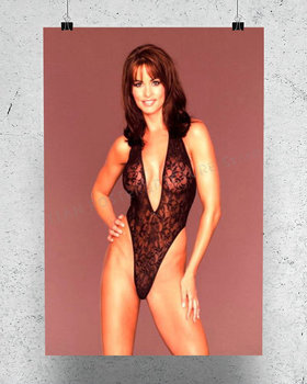 R0249 Karen McDougal Star Sexy Beautiful Girl Model Wall Sticker Silk Poster Art Home Decoration image