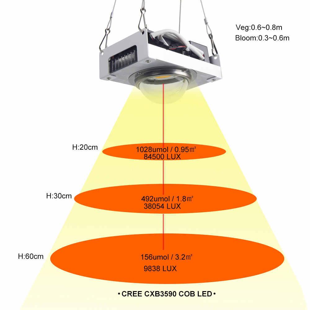 CREE CXB3590 COB LED büyümek işık tam spektrum 100W vatandaş 1212 LED iç mekan lambası çadır topraksız sera bitki çiçek