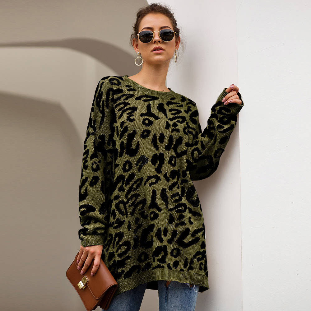 Dilusoo Leopard Print Winter Knitted Sweater Women O-neck Long Sleeve Loose Sweaters Female 19 Casual Autumn Overalls Sweaters 10
