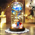 Mother's Day Artificial Eternal Beauty and the Beast Rose In Glass Dome LED Foil Plated Gold Rose Birthday Valentines Day Gift