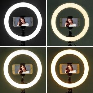 Image 5 - Travor 10 Inch Fotografische Ring Lamp Desktop Led Lamp 3 Licht Modi 3000K 5000K Dimbare Led Ring licht Voor Make Up