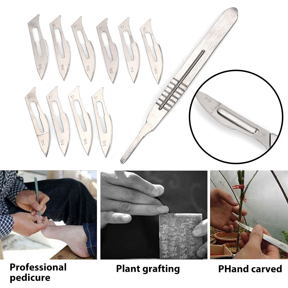 Sturdy Carving Knife Doctor Equipment Silver Practical Scalpel Tool Characterization Stainless Steel Castration Blade