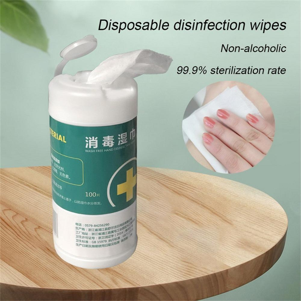 100pcs Disposable Disinfection And Sterilization Wipes For Family Health Avoid Virus