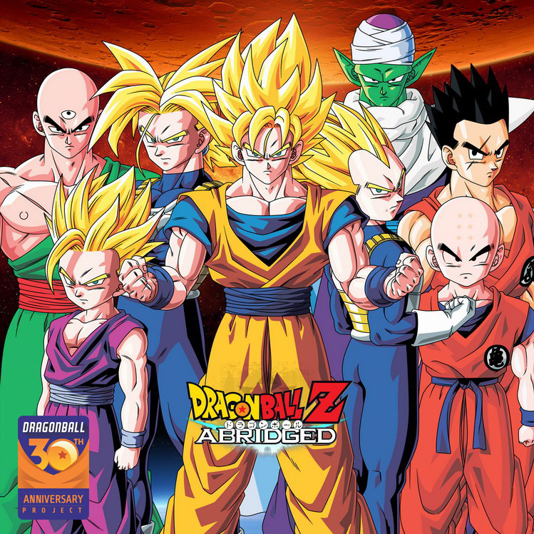 DRAGON BALL Z Super Saiya Beautifully Picture Album Collection Cards Gift