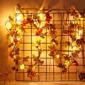 Новинка 1 5/2 м гирлянда в форме фруктов Рождественский светильник ing strings IP64 водонепроницаемый теплый белый уличный светильник для дома  свад...