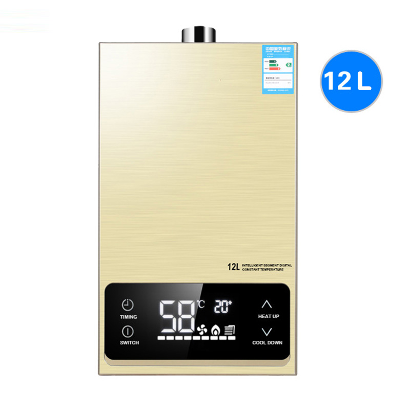 Vertical Gas Water Heater For Household Natural Gas Liquefied Gas 12 Liters Microcomputer Thermostatic Strong Row Instant Shower