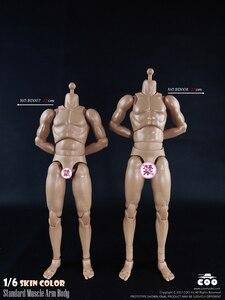 Image 2 - COOMODEL 1/6 mężczyzna mięśni ciała Model BD007 BD008 BD009 BD010 kolekcjonerskie zabawki figurki akcji