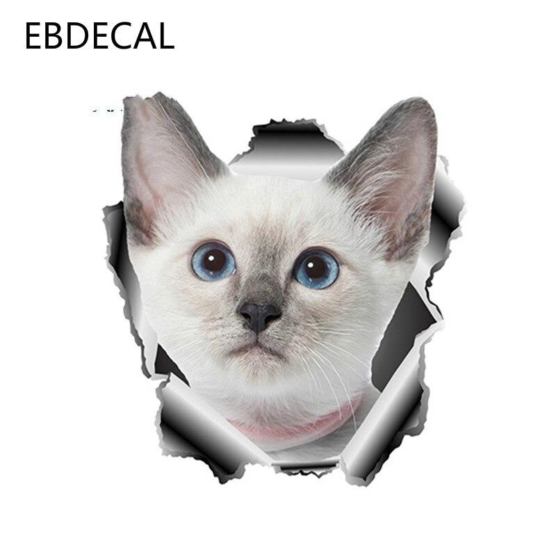 Funny Cat for Auto Car//Bumper//Window Vinyl Decal Sticker Decals DIY Decor US