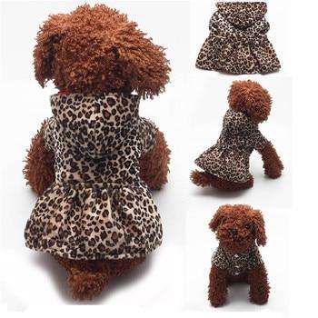Leopard Hoodie  1