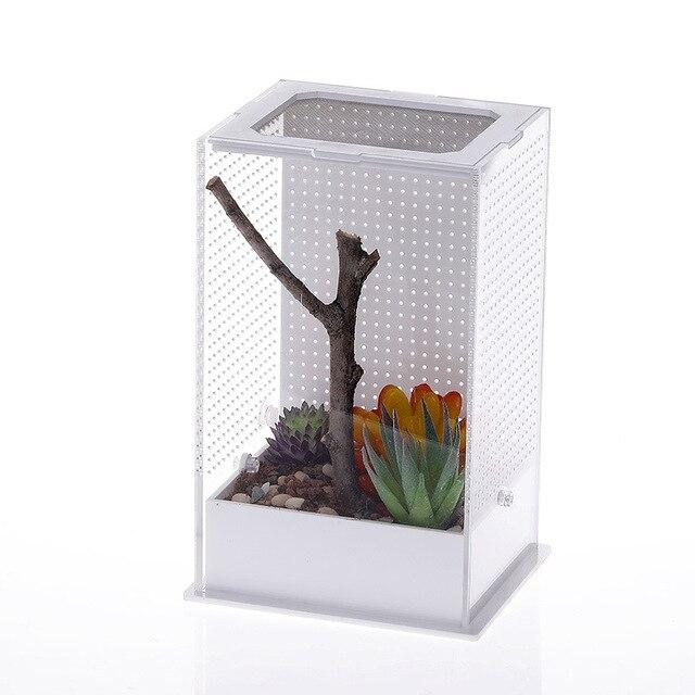 Reptile & Insect Feeding Terrarium  6