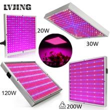 120W 1155Red + 210 mavi AC85 ~ 265V LED bitki büyümek işık lambaları için çiçekli bitki ve hidroponik sistem kapalı Led fitolamp paneli