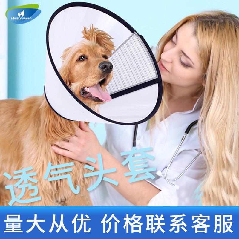 Elizabeth Ring Cat Neck Ring Neck Cat Elizabeth Pet Dog Dog Headgear Anti-Bite Anti-Lick Shame Circle Supplies