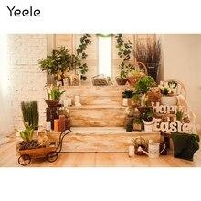 Yeele – escalier intérieur en bois pour bébé, plantes en pot, arrière plan de photographie, décoration pour Studio Photo