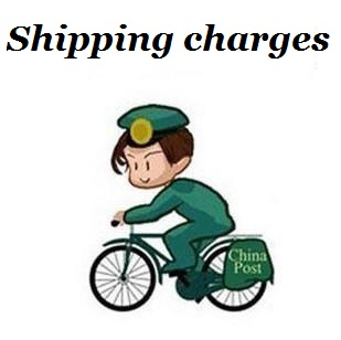 1 USD Shipping Charges Transportation Cost Delivery Fees Make Up