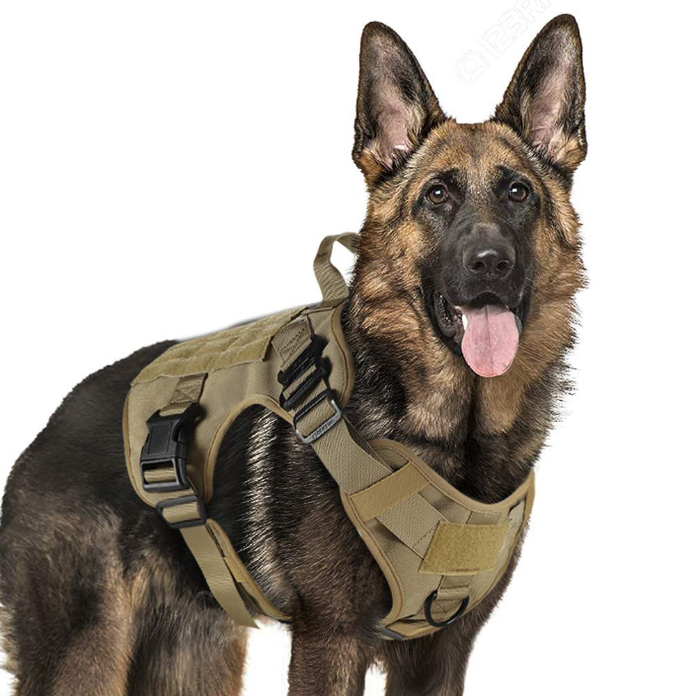 Military Tactical Dog Harness Working Dog Vest Nylon Bungee Leash Lead Training Running For Medium Large Dogs German Shepherd|Harnesses| - AliExpress