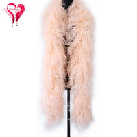 10Ply Fluffy Feather Boa Natural Ostrich Feather Champage Shawl Carnival Stage Clothing Decoration
