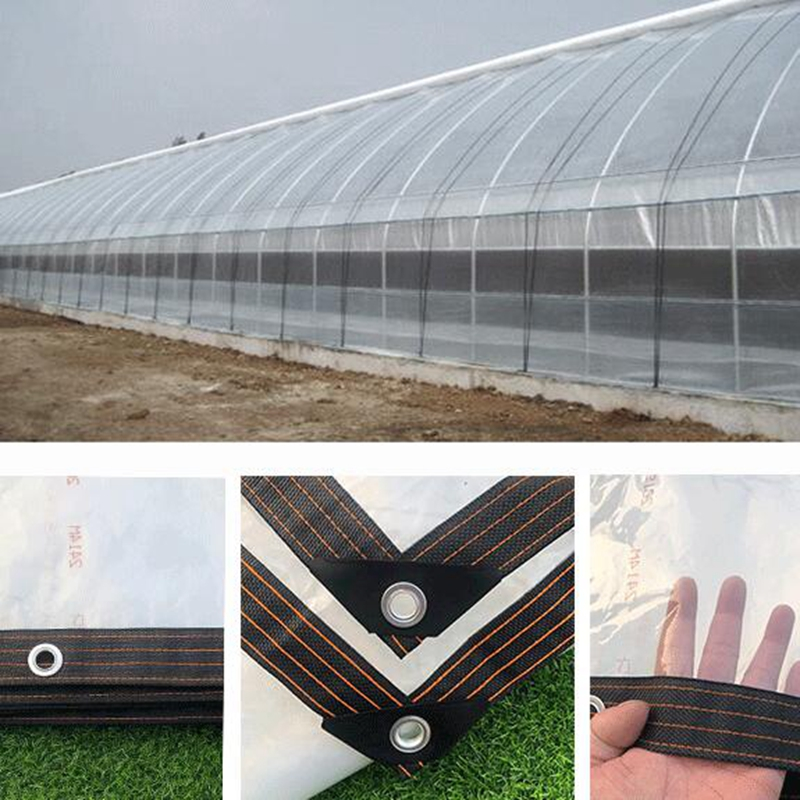Various Size PVC Tarp Highly Transparent Rain Sail Tarp Home Garden Outdoor Waterproof Tarpaulin Customized Size