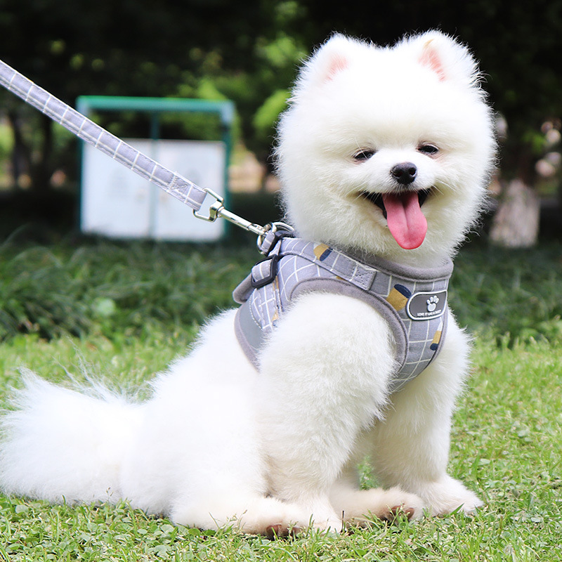 Vest Dog Pomeranian Lanyard Doggy-Style Small Dogs Teddy Traction Chest Unscalable Medium-sized Dog Bichon Dog Universal Walk