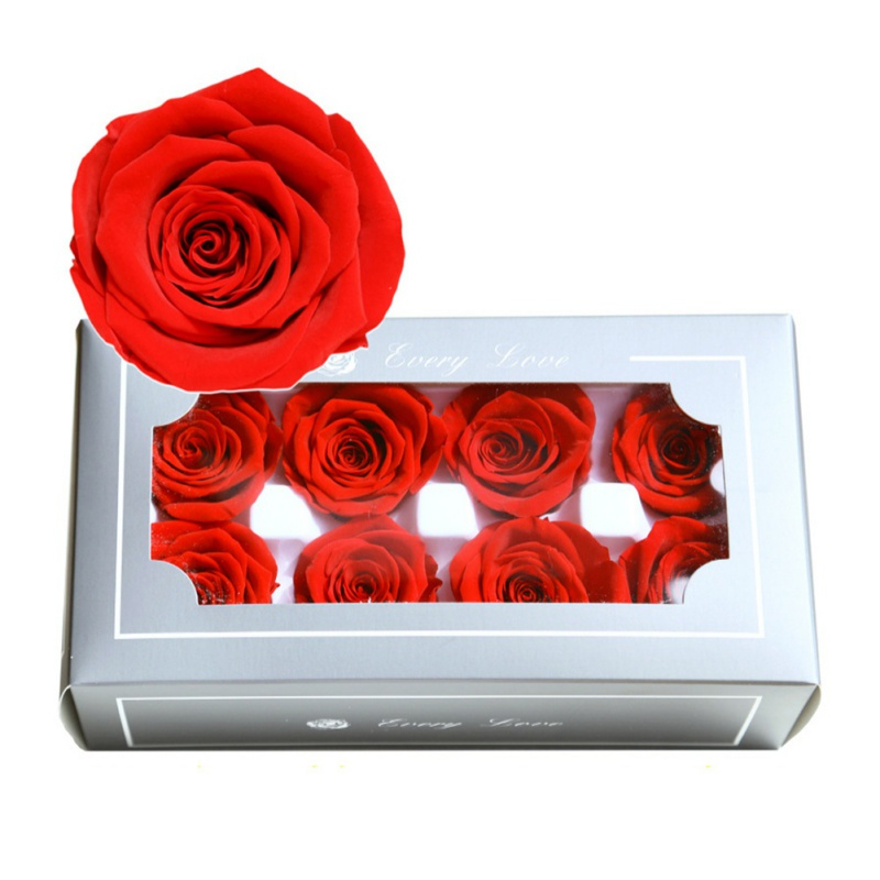 Eternal Life 8PC Rose Box - novariancreations.com