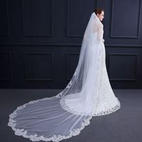 New Wedding Veil Long Paragraph High End Lace Embroidered Lace Trailing 3 m Veil