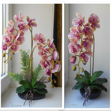 Indigo phalaenopsis borboleta orquídea branca real toque artificial flor escritório casamento mariposa orquídea floral festa interior guarnição