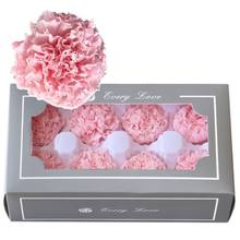 Handmade Preserved Fresh Flowers Gift Pack Artificial Flower Eternal Carnation Heads for Mothers Day