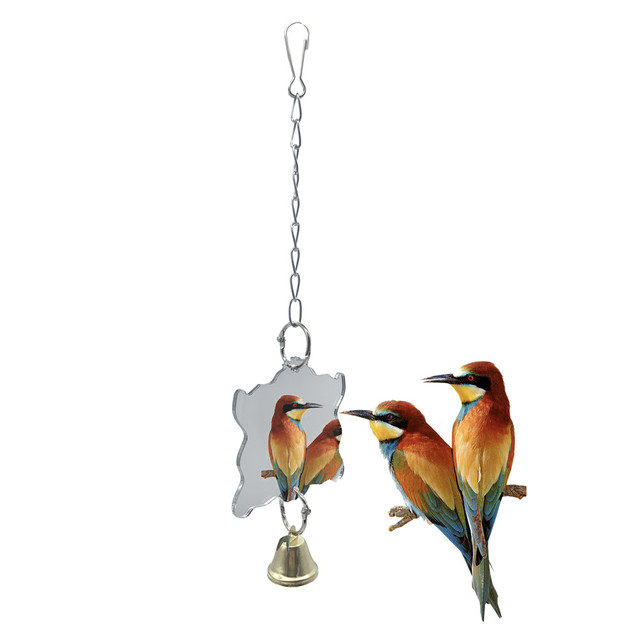 Parrots Toys And Bird Accessories Toy Swing Stand 3