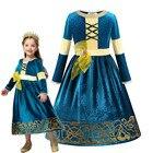 Brave Princess Dress...