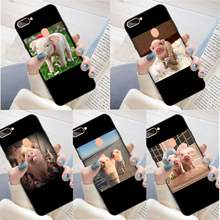 Couples Cartoon Lovely Pink Pet Pig Black TPU Soft Phone Case Cover for oppo r11 r11s plus r15 r17 r17pro case(China)