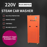 Commercial Steam Car Washing Machine High Pressure High Temperature Washing Machine 220V Mobile Water Vapor Cleaning Machine