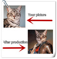 Ретро-стиль, персонализированный постер для домашних животных, животных, творческий, HD печать, настенное украшение