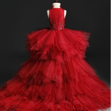 Appliques Tulle Kids Party Evening Gowns Long Trailing Lace Ball Gown Flower Girl Dresses For Weddings First Communion Clothes
