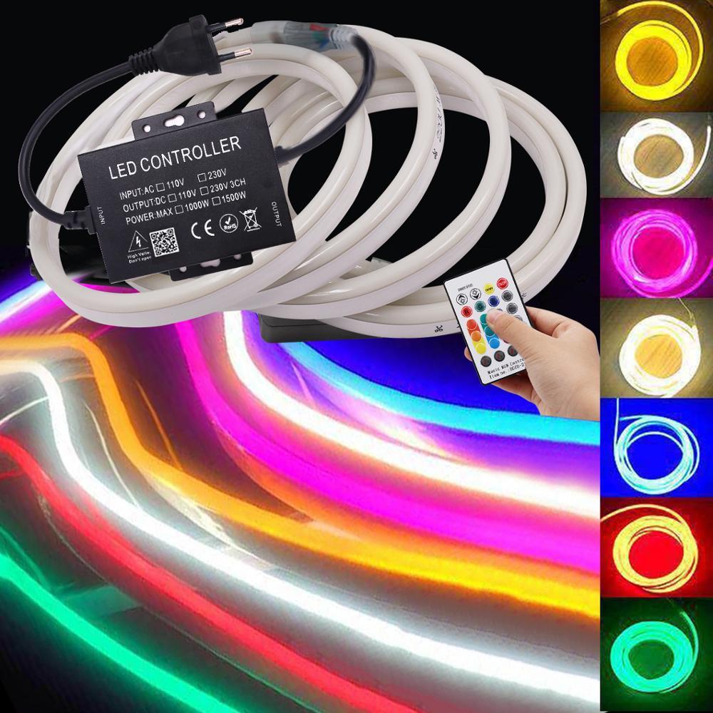 Music Neon Light RGB LED Strip Flexible LED Neon Sign 110V 220V AC 2835 5050 120LED Ribbon Tape Lamp 24Key Remote Control