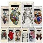 Human anatomy organ ...