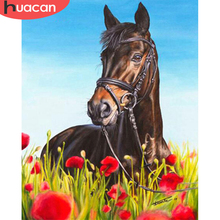 Painting by Number Drawing Animal-Horse Huacan-Picture Wall-Art Acrylic Home-Decor Gift