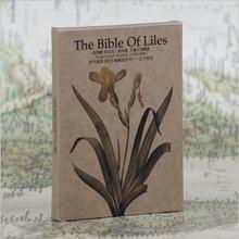 30 шт в коробке открытка s Ручная роспись Сад растение Лилия