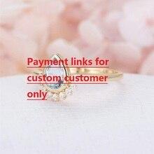 Visisapカスタムアイテム各位の場合顧客    ちょうど支払のための充電